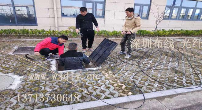 深圳国际文化大厦网络布线 福田妇儿大厦办公室网络布线